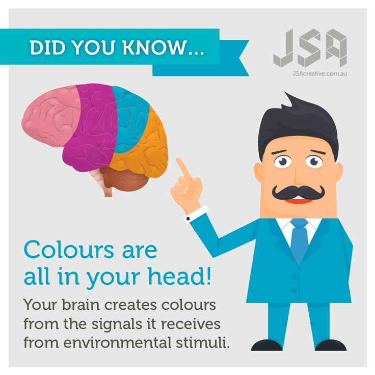 Did you know...  Your eyes can fool you! Colours are controlled by your brain - maybe that's why we have trouble describing our favourite shades.