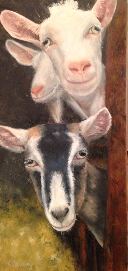 """Goat picture  www.KristenMaready.com """"The Receiving Line""""  Oil on canvas, 12x24 These cute goats are the barnyard ambassadors for the country farm! They are just begging to be petted! Tags: farm, goat, animal, barn, art, decoration, oil, painting"""