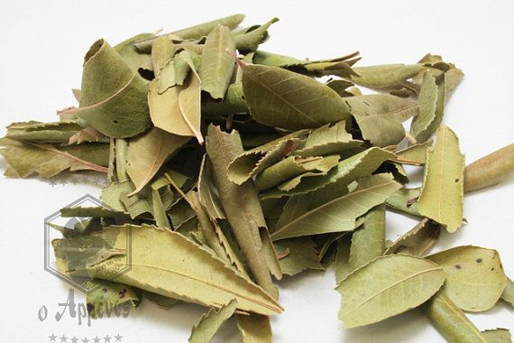 Greek dried Arbutus unedo leaves strawberry tree leaves by Armenos