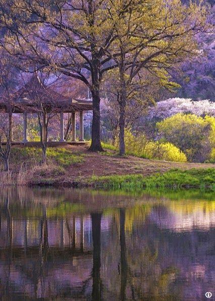 Όμορφα χρώματα φύσης