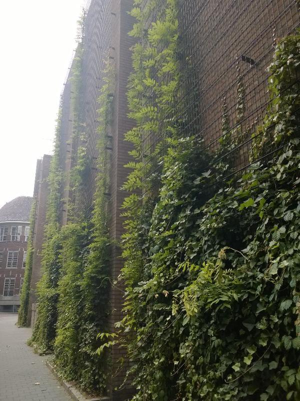 Groene begroeiing tegen parkeergarage Wolvenhoek in 's-Hertogenbosch