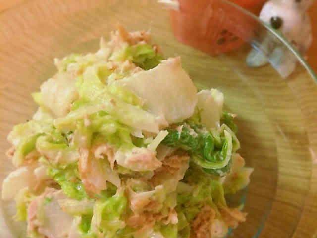 抱えてたべちゃうよ!白菜サラダの画像