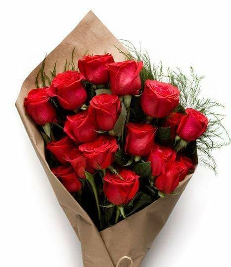 Find This Pin And More On Ceske Red Roses