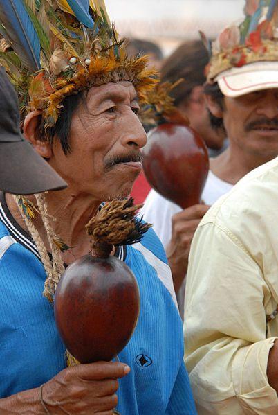 Xamã guarani, Paraguay, South America