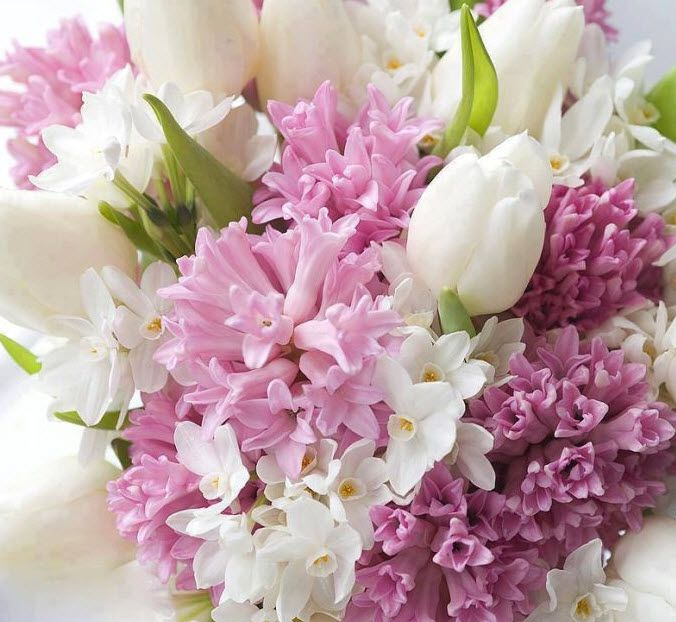 Pink hyacinths, white tulips, white narcissus.