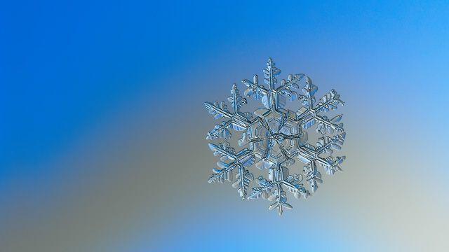 Snowflake ultra HD wallpaper: Gardener's dream