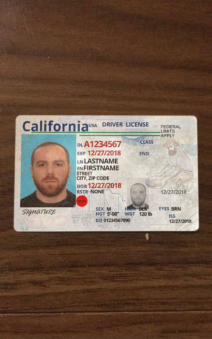 rstr 95 on drivers license