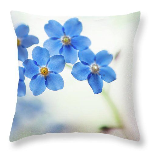 Forget Me Not Throw Pillow featuring the photograph Forget-me-not Flowers by Jenny Rainbow