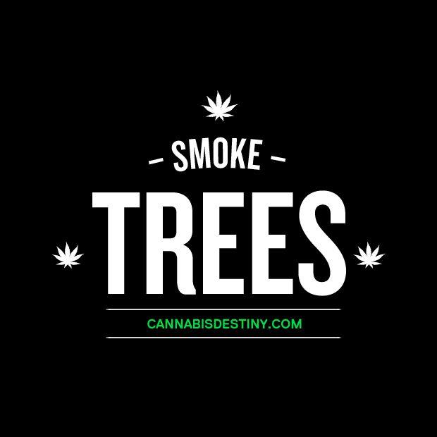 Stoner Friendship Quotes: Words Of Wisdom: Smoke TREES Ya Bish! XD #weed #marijuana