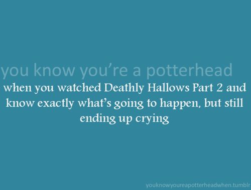 Yup yup: Books Things, Potter Mad, Nth Time, Single Time, Potter Mania, Potter Lovers, Expecto Patronum, Potter Obsession, Harry Potter
