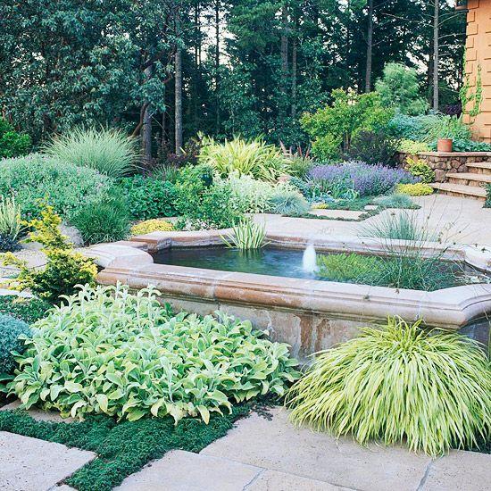 Trockenheitsverträgliche Pflanzen - Teich, Brunnen