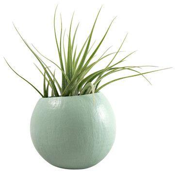Cute plant holder cubicle ideas pinterest photos indoor pots and planters and pots - Cubicle planters ...