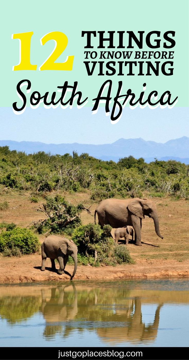 Planning on travel to South Africa? Here's 12 interesting facts about South Africa that will inspire you to visit this incredible country in your next African Roadtrip. #SouthAfrica | #SouthAfricaTravelTips | #SouthAfricaTravel | #SouthAfricaRoadtrip | #SouthAfricaCapeTown | via @justgoplaces
