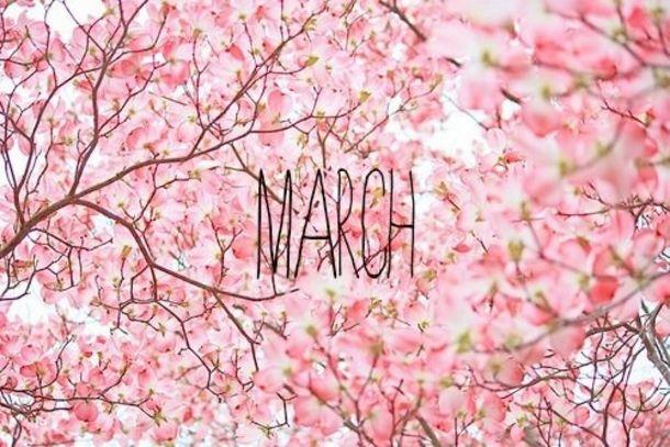 120 Hello March Quotes In 2021 Hello March Hello March Images Pink Flowering Trees