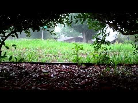 'Rain Sounds' 2 hours 'Sleep Video' Heavy Rain Sounds HD; inspirational for rain