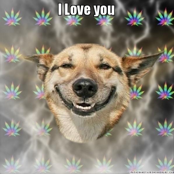 I Love you  - Stoner Dog
