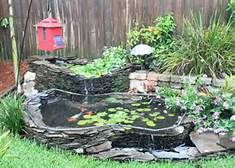39 Curated Turtle Pond Ideas By Xmab2x Pond Waterfall Box Turtle Habitat And Image Search