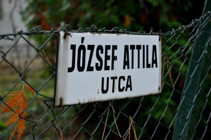 Balatonföldvár. Hungary. József Attila. Utca. Ősz. Autumn. Street.