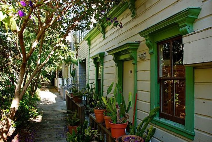 Picturesque Napier Lane, which is located just off the Filbert Steps on Telegraph Hill, is a small walking street that leads to a few mid-1900 homes surrounded by lush gardens and a plank walking path.