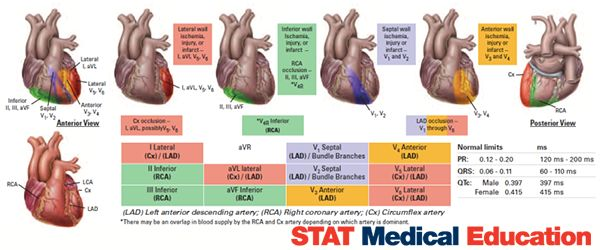 12 Lead And Stemi Placement