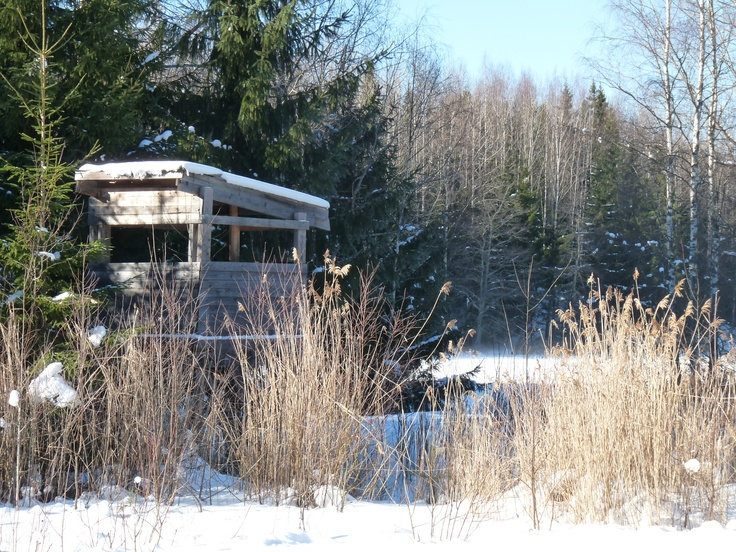 """Great place for a hot drink during a winter hike. In the summer we use this place for our """"Early bird breakfast""""."""