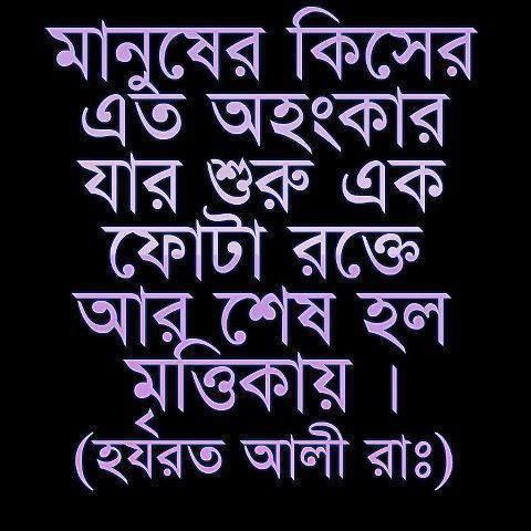 34 best images about bangla quotes on pinterest