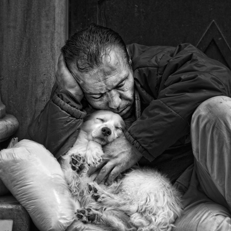 Comfort. Hyper realistic drawing by Paul Cadden. Included these because of this drawing only. I can't believe it's not a photo! And the man and his dog. So many of these that I pin make me yearly-eyed or downright cry.  If you care about ending poverty and reducing homelessness go to http://www.fuzeus.com