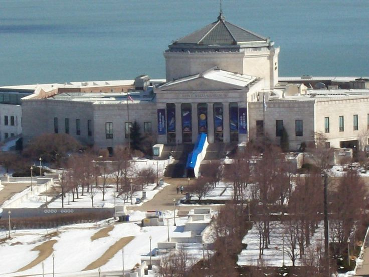 35 Best Images About Shedd Aquarium On Pinterest Campus