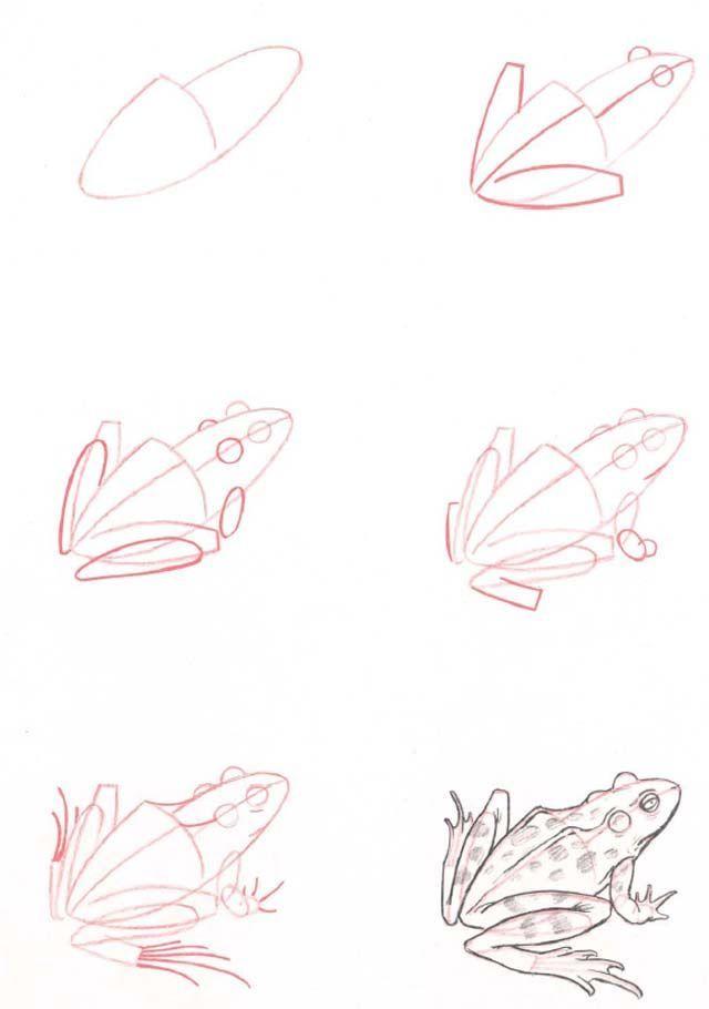 kreslenie.sk kresba-zvierat-ktoru-hravo-zvladnes