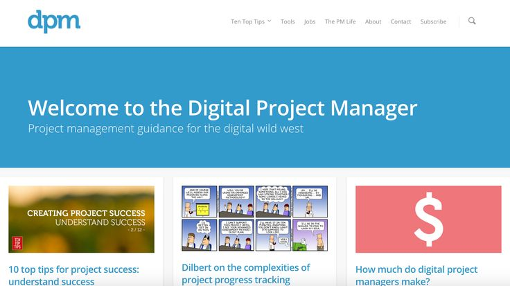 The Digital Project Manager