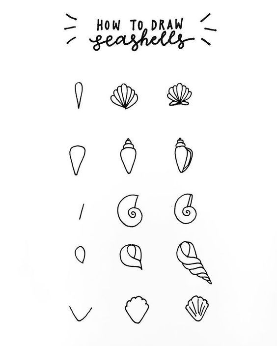 a mini tutorial on how i draw my seashells for this month's theme thanks for