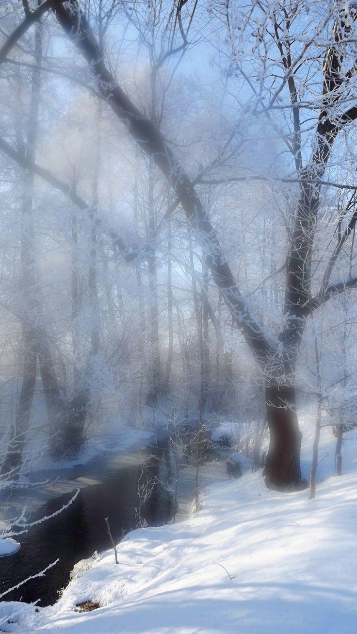 #winter, #snow, #blurred lens