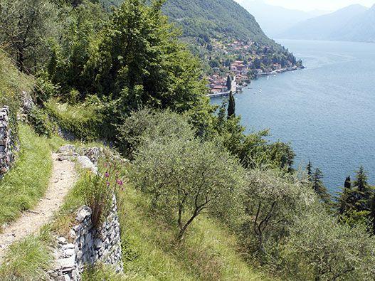 Cammineremo lungo il sentiero del viandante da Bellano a Varenna, poi traghetto e infine visita all'Orrido.