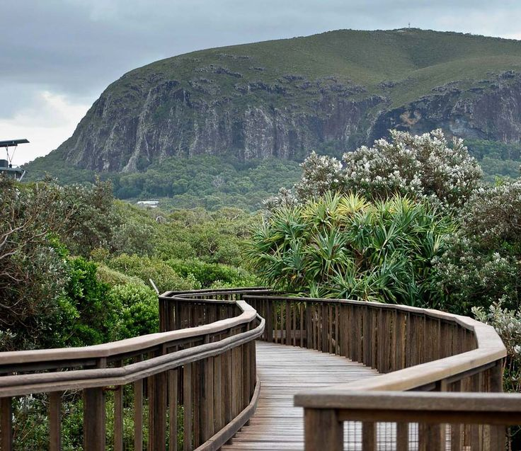 View of Mount Coolum from the Boardwalk, Sunshine Coast