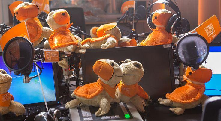 Żółwiki Lata z Radiem * * * * * * www.polskieradio.pl YOU TUBE www.youtube.com/user/polskieradiopl FACEBOOK www.facebook.com/polskieradiopl?ref=hl INSTAGRAM www.instagram.com/polskieradio