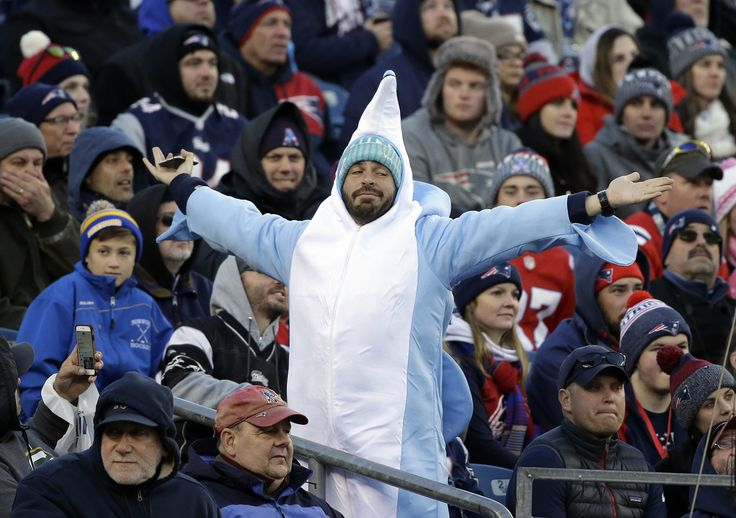 #LeftShark? Is that you?  Spotted in New England in Week 12. (AP/Senne)
