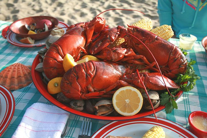 a clambake, with lobster and corn