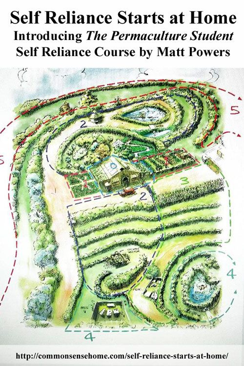 139 Best Images About Permaculture Design On Pinterest