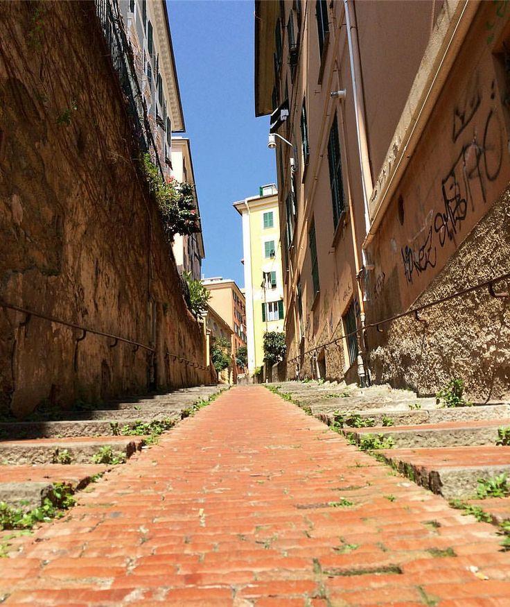 Genoa,Italy • Генуя, Италия #италия #генуя #genoa #genova #italy #city #town #oldtown #travelgram #travel #travelling #traveling #italian #creativephototeam #europe #street #road #world #aroundtheworld #путешествия #путешествие #отпуск #like4like #likefor