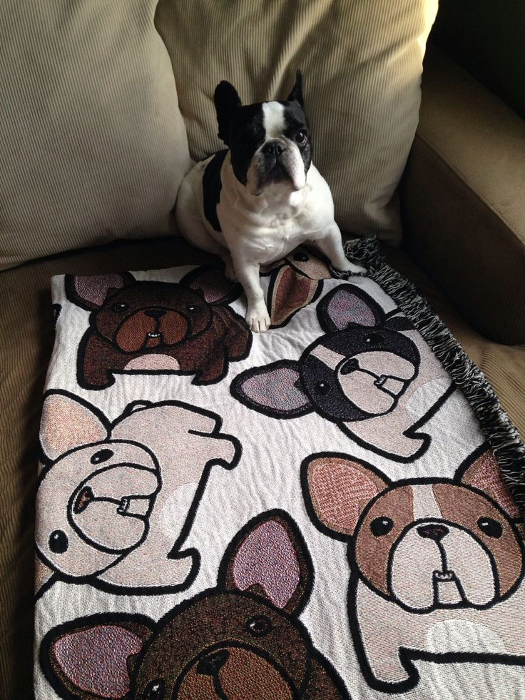 French Bulldog Blanket with FREE SHIPPING by frenchbulldogrescue on Etsy https://www.etsy.com/listing/256370890/french-bulldog-blanket-with-free