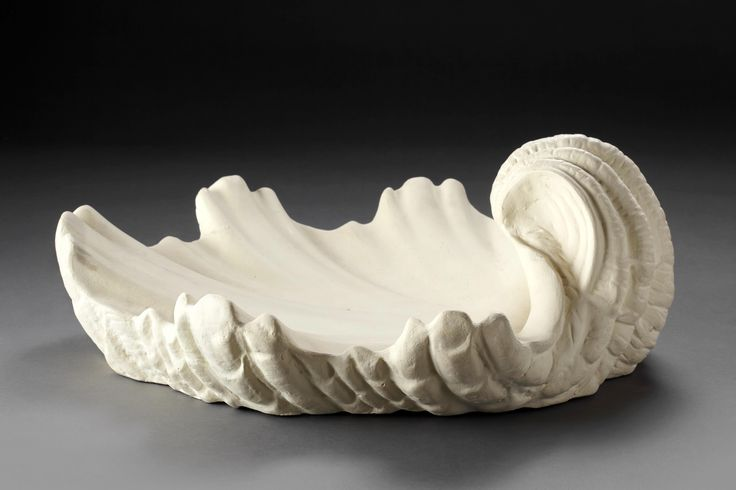 Serge ROCHE (1898-1988) Pair of shell-shaped wall sconces Plaster H: 7.3 in. - 18.5 cm. L: 19.3 in. - 49 cm.  D: 16.5 in. - 42 cm.