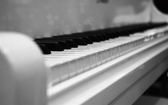 Descargar fondos de pantalla plan, monocromo, las teclas del piano, instrumento musical