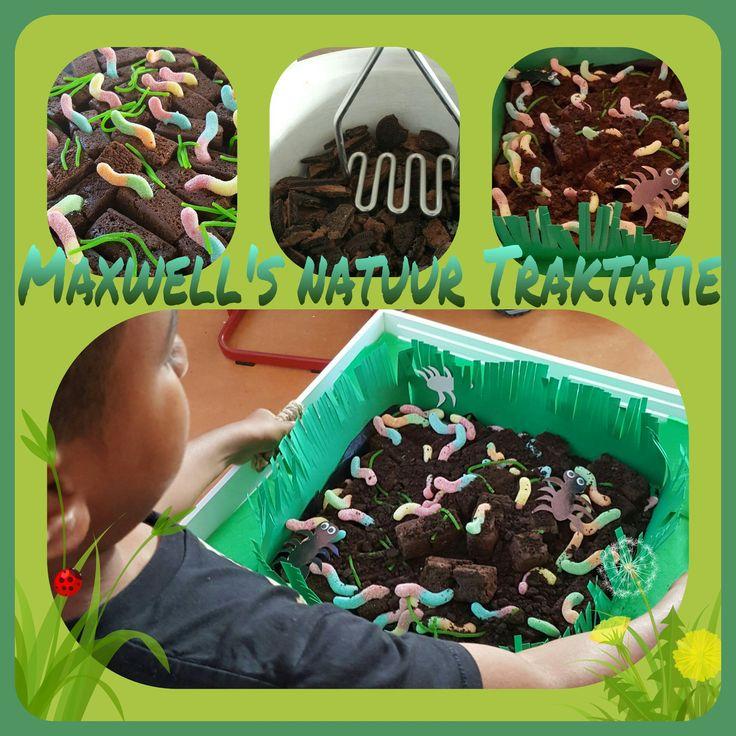 Traktatie 'in de natuur'. Leuk als je een natuur thema hebt.  Benodigdheden: Brownies - Chocolade Oreos - snoepjes in de vorm van wormen en gras.  Eventuele versiering: Dienblad Groene Karton Groen Crêpepapier  #traktatie #natuur #jongens #meisjes #8 #verjaardag #treats #nature #brownies #worms #birthday