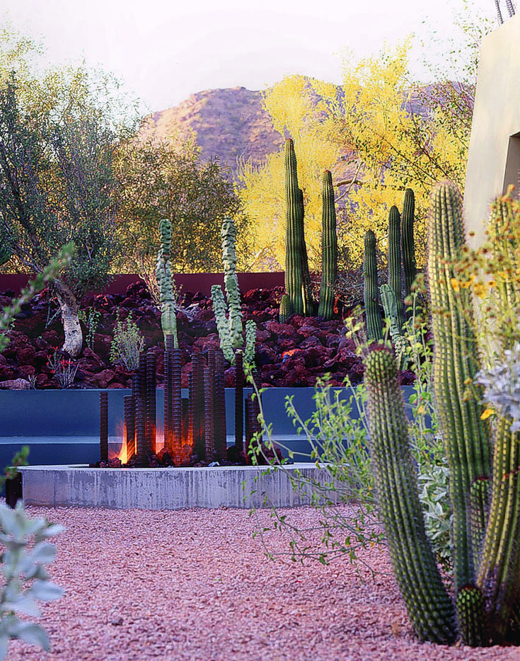 37 best Desert Landscaping Can be Beautiful images on Pinterest