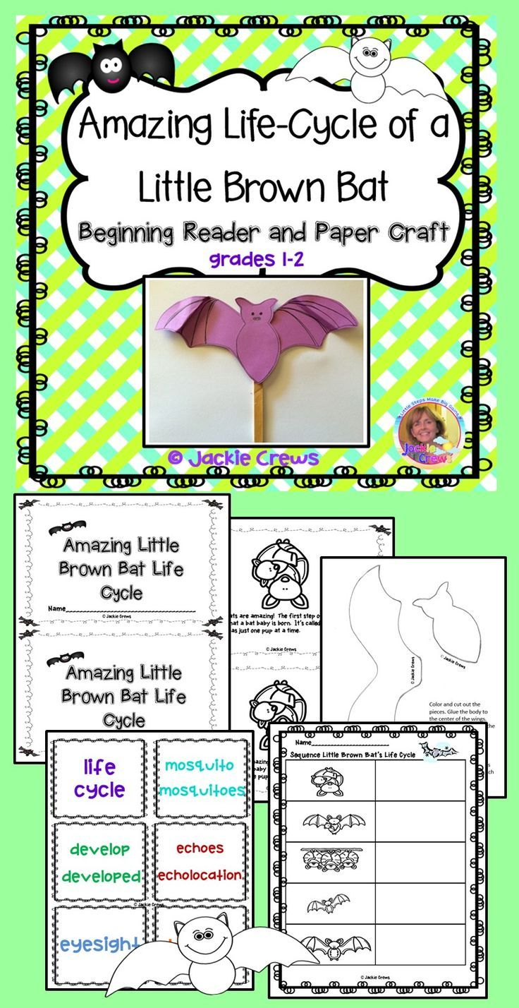 This non-fiction beginning reader is the life-cycle of the little bats that use echolocation to hunt insects. I have purposely embedded some synonyms in the text. Since this is a life-cycle text, it lends itself very well to sequencing activities. NEW: I added 12 vocabulary cards to accompany the reader.