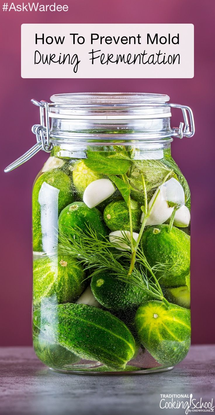"""How To Prevent Mold During Fermentation #AskWardee 074   """"I'm so bummed out my first ferment in the crock was a total fail!"""" wrote Colleen S. Colleen's pickles turned soft and got moldy. :( Oh, no... that bums me out,...   TraditionalCookingSchool.com"""