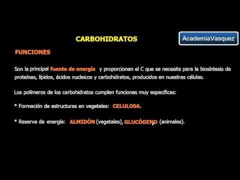 Carbohidratos: Características y Clasificación