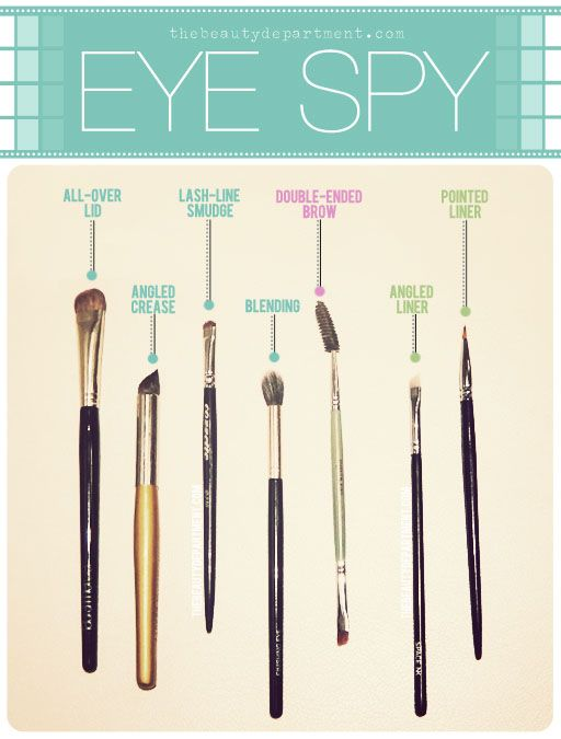 The Beauty Department: Your Daily Dose of Pretty. - WHICH BRUSH DOES WHAT: EYES