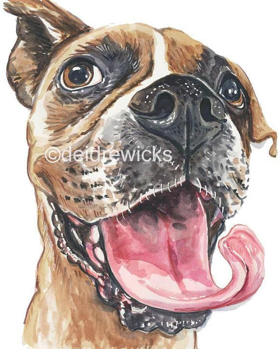 Boxer Dog Watercolor Painting Fine Art Print Big Smile Dog With