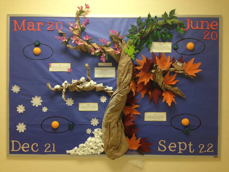 4 seasons bulletin board made by yours truly and 2 of my awesome classmates!